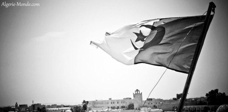 drapeau-algerien-noir-et-blanc